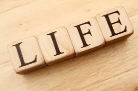 Life22